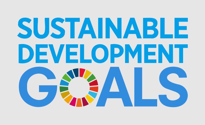 SDGsを経営戦略として読み解く